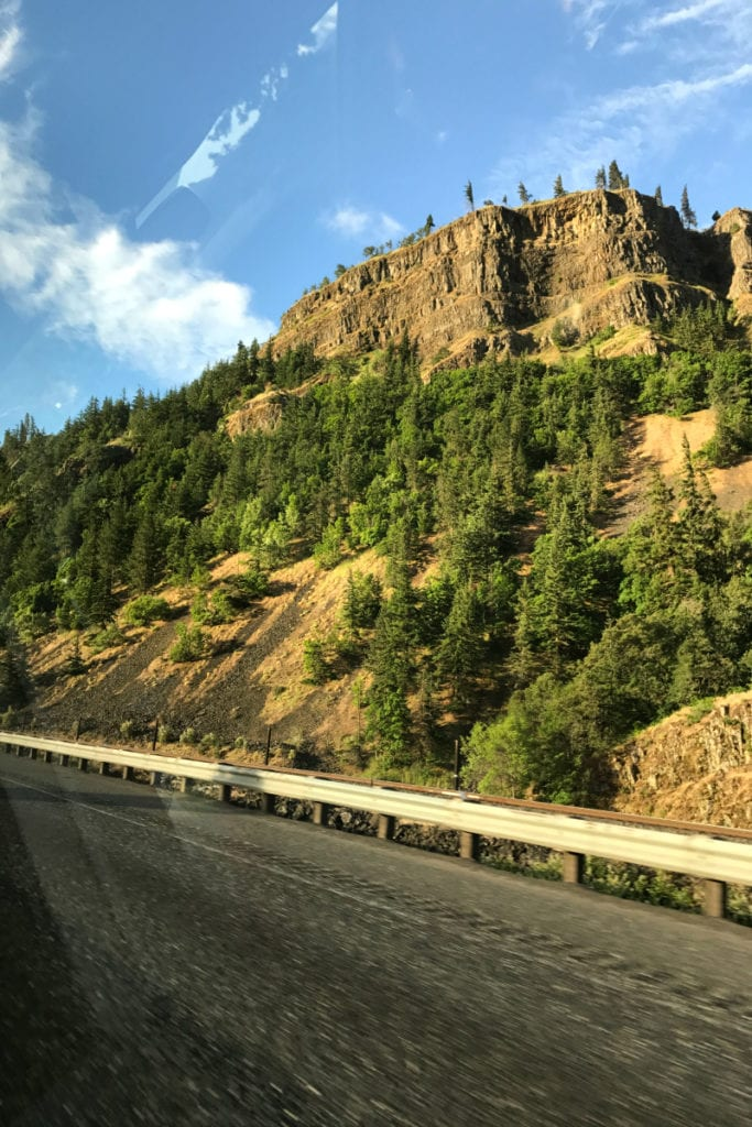 View from an Oregon highway