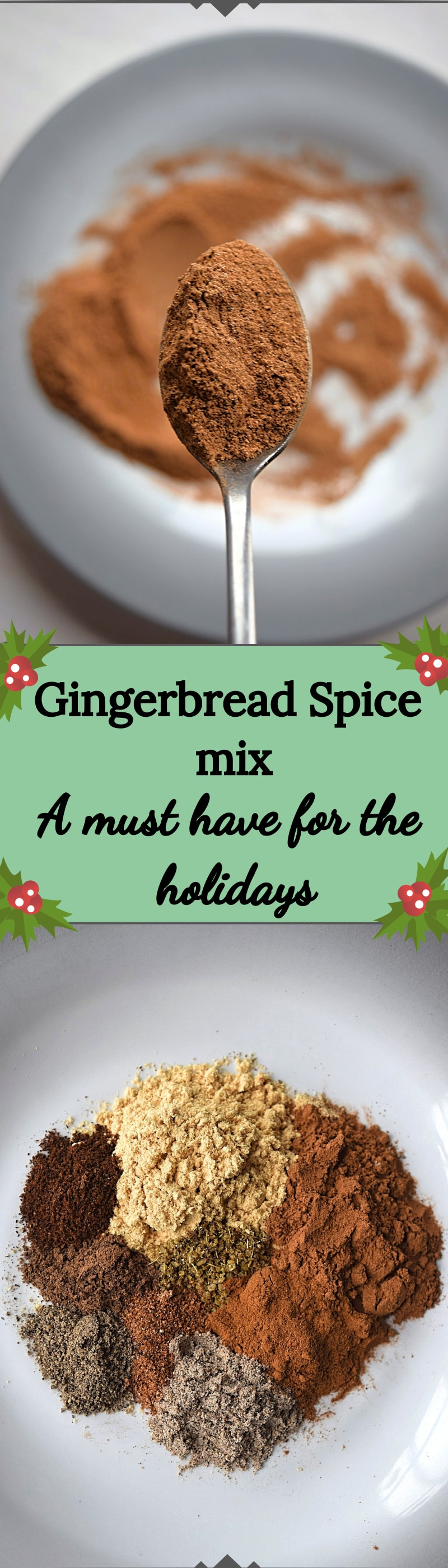 gingerbread spice mix - A Stray Kitchen
